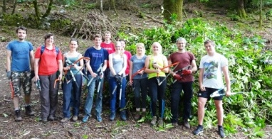woodland volunteers