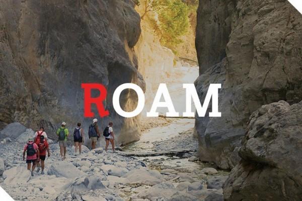RWH Roam for website